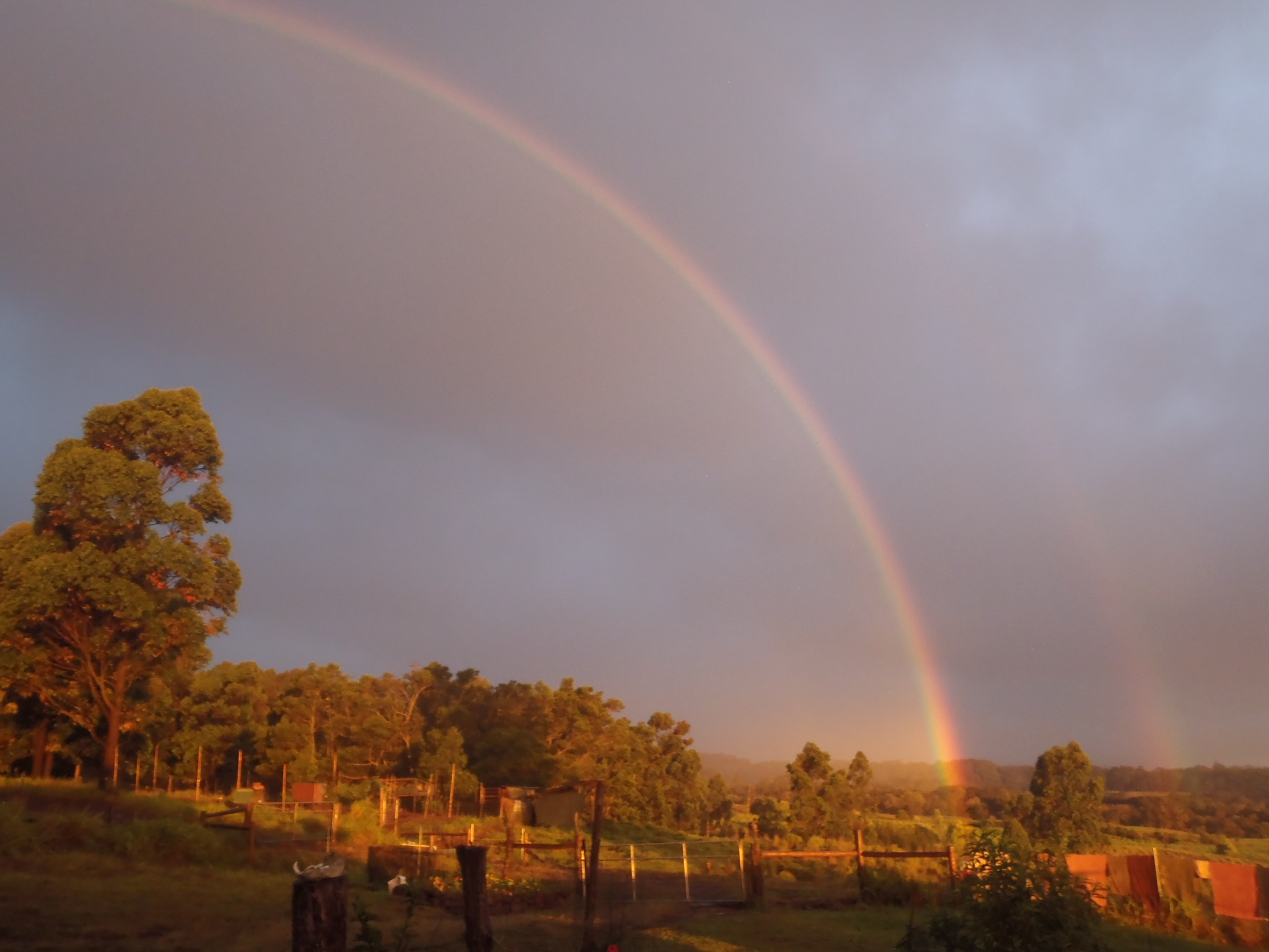 Rainbow over our gate.